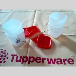 Contenitori Freezer Tupperware per Conservare in Cucina