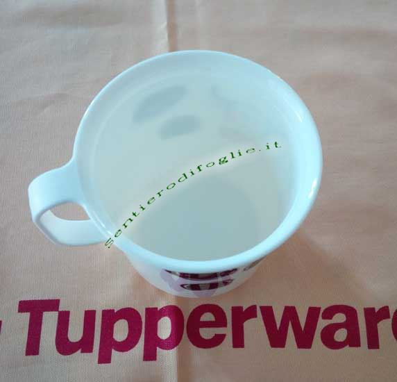 Tazza Decorata Tupperware Bevande Calde Fredde Resistente Impugnatura Bianca