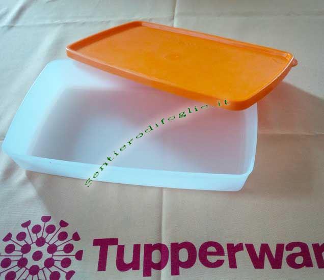 Contenitore B05 Tupperware Freezer Bianco Arancione Satinato Conservare Congelare