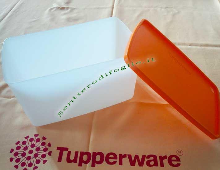 Recipienti Tupperware Freezer Bianco Arancione Satinati Sigillo Ermetico Aria Vapore B05